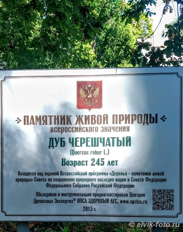 abramtsevo98