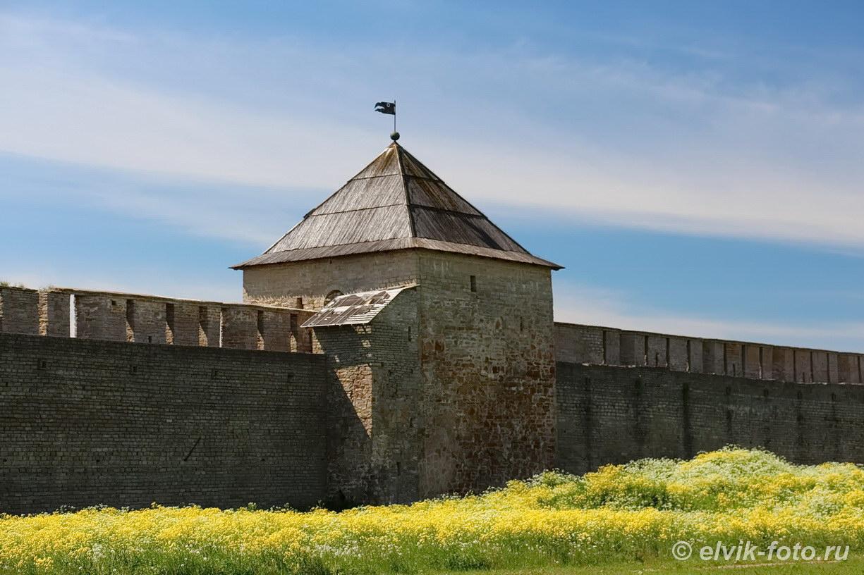 Ивангород замок 48