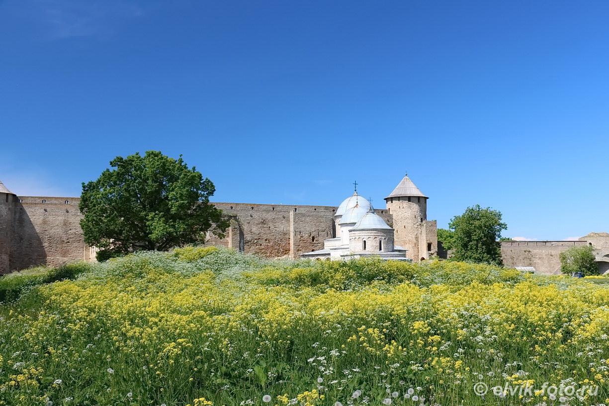 Ивангород замок 51
