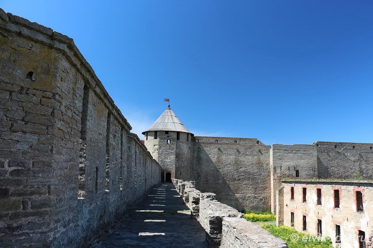 Ивангород замок 56