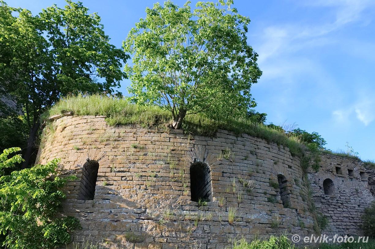 Ивангород замок 60