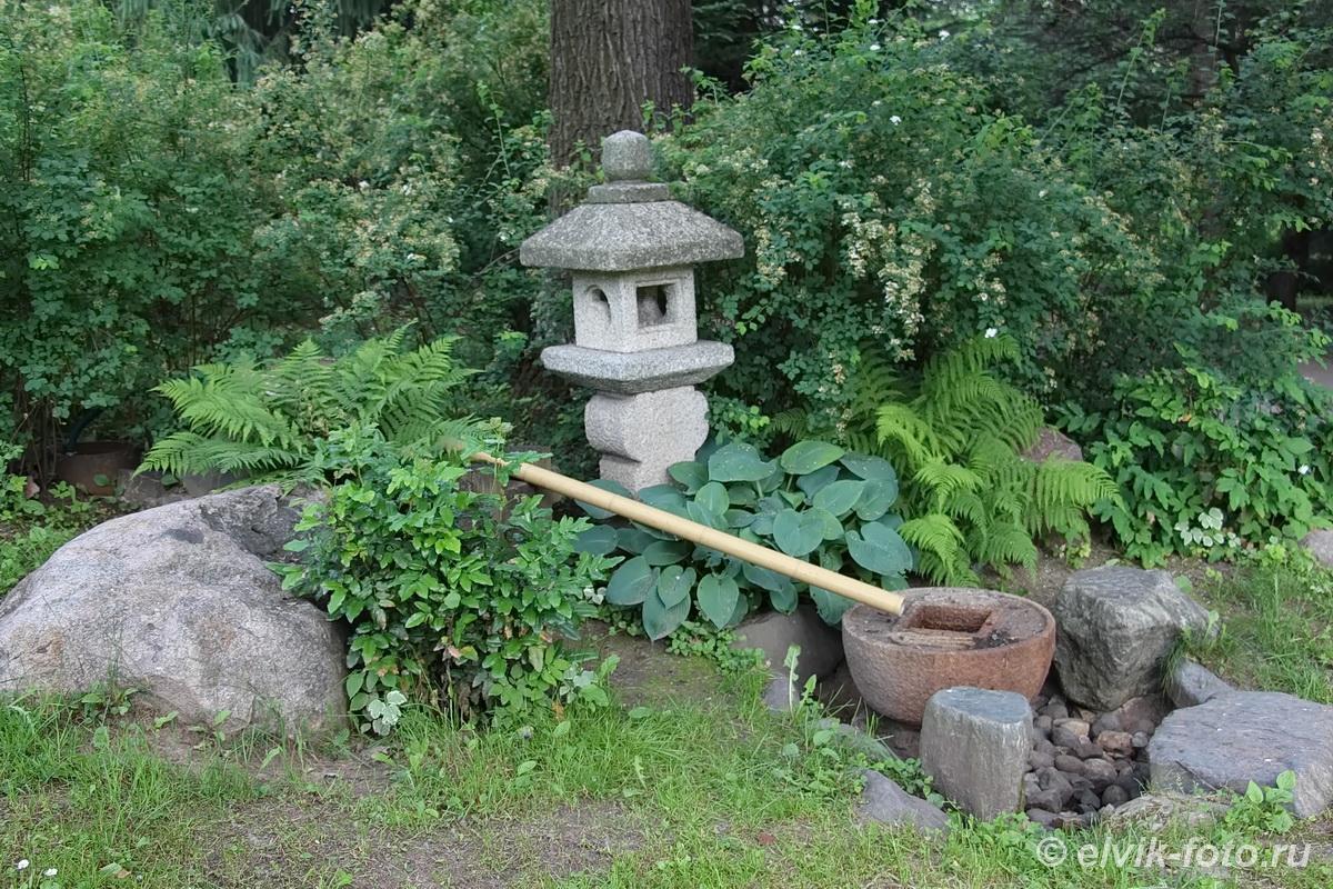 Японский сад 11