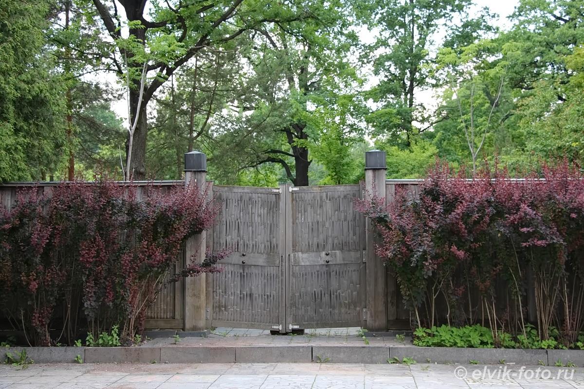 Японский сад 13