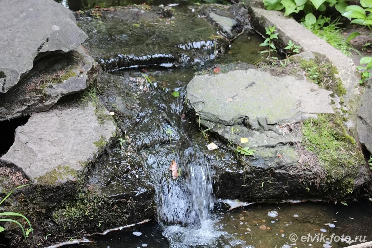 Японский сад 24