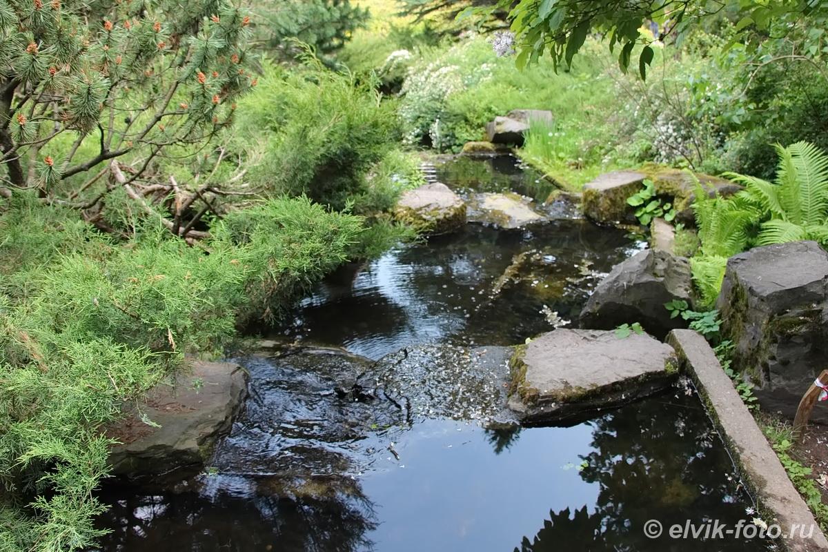 Японский сад 25