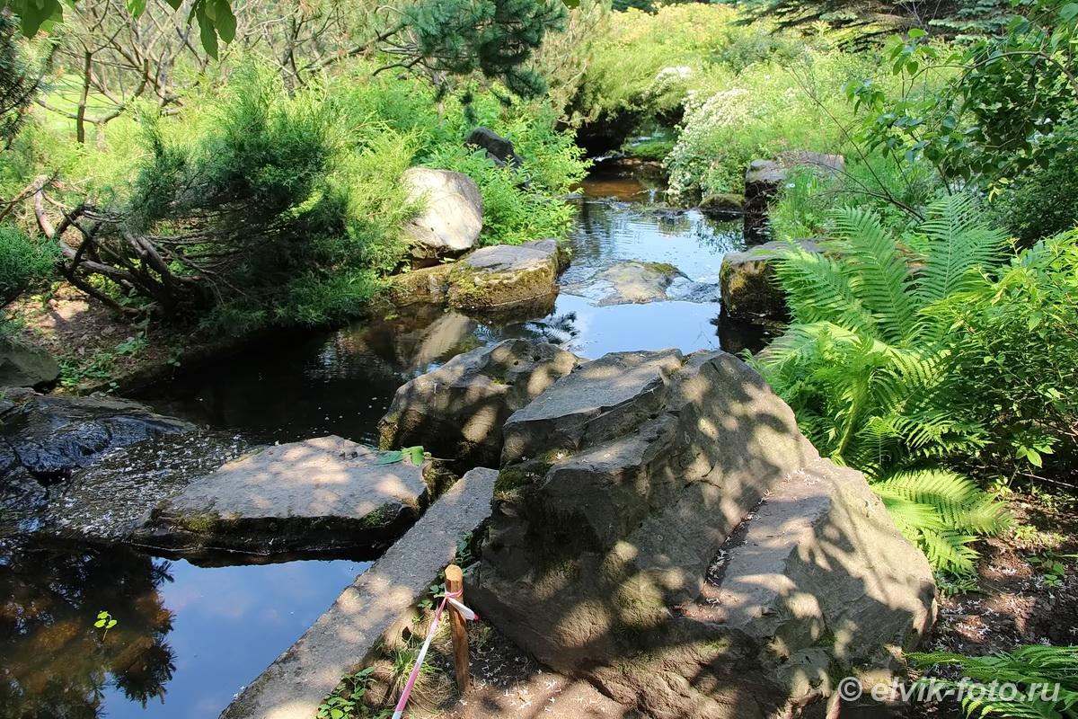 Японский сад 46