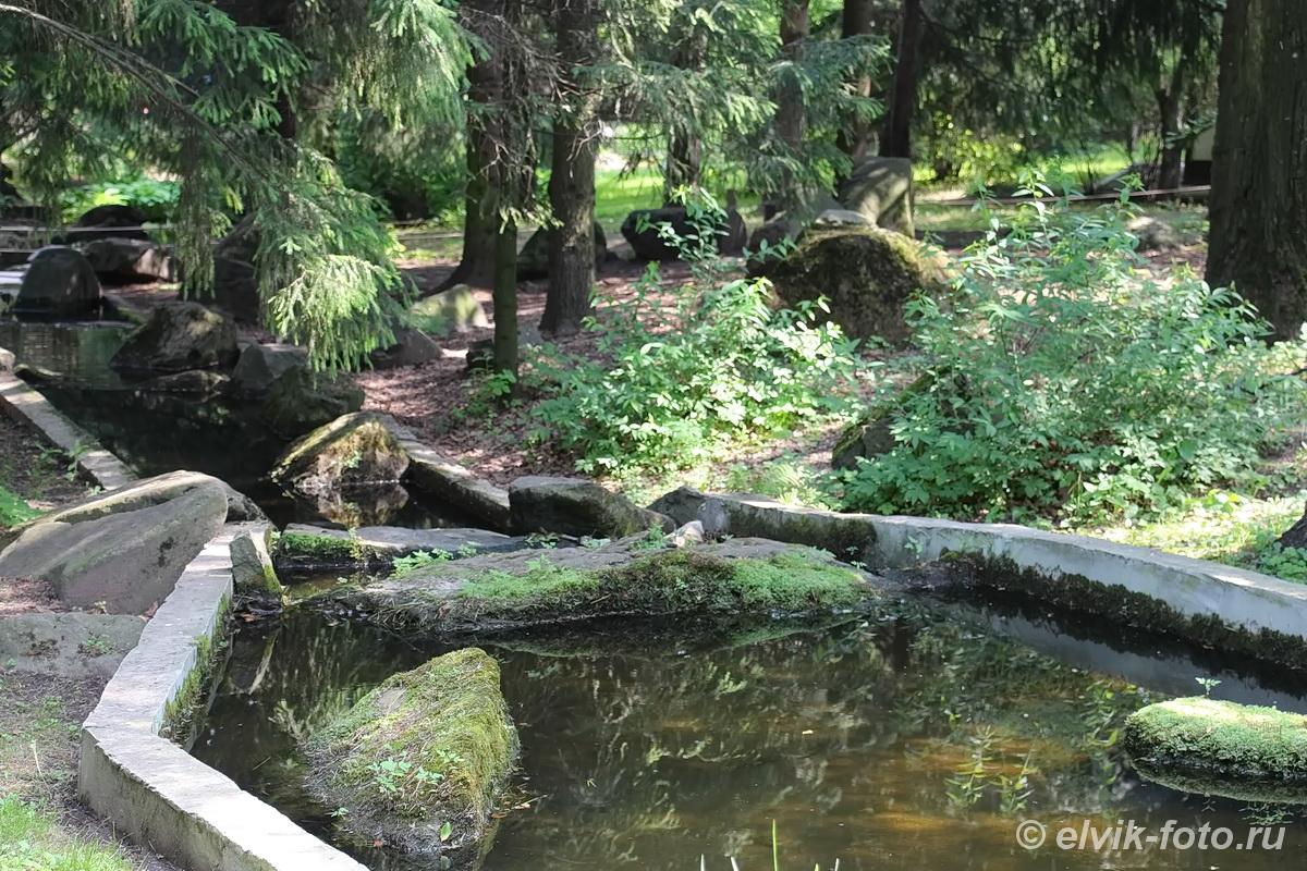 Японский сад 47