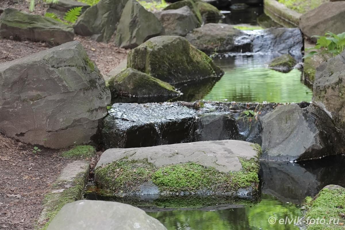 Японский сад 49
