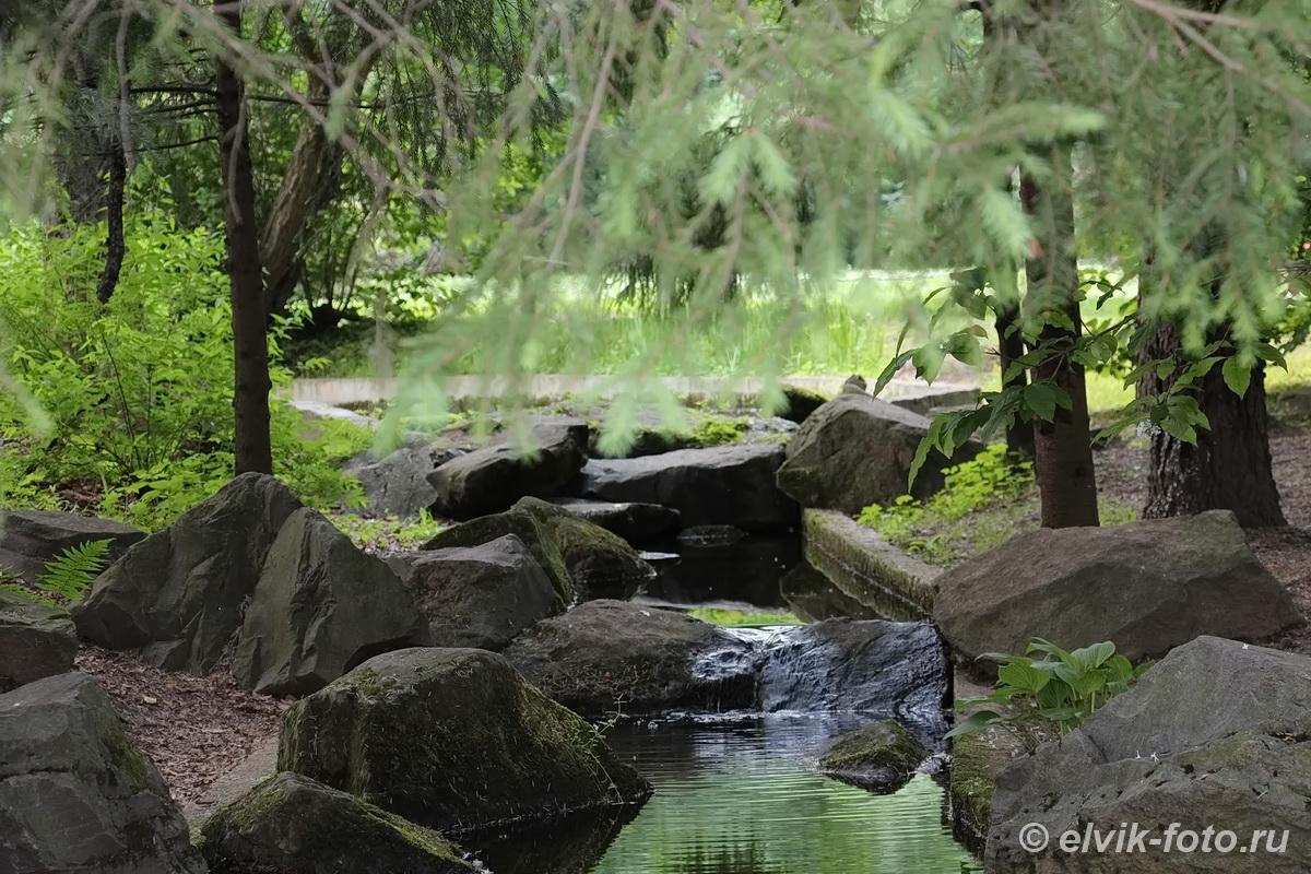 Японский сад 50