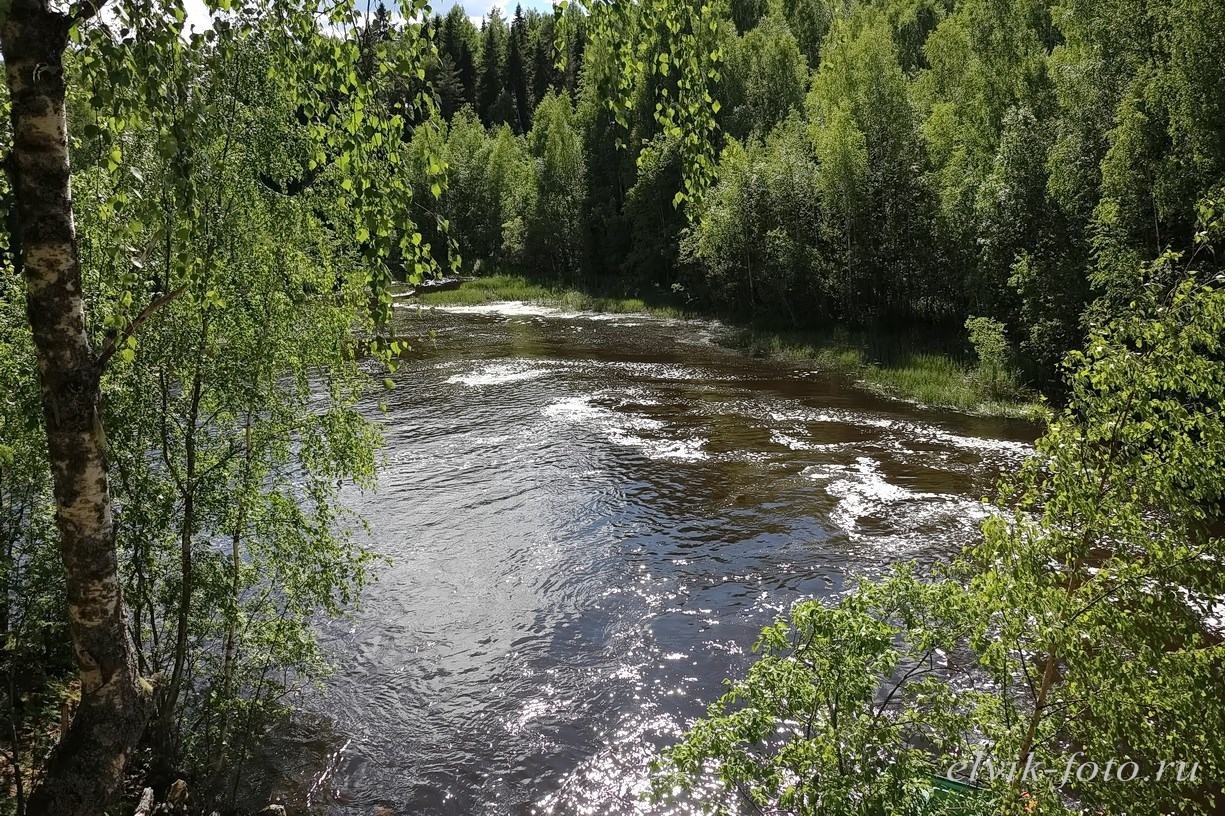 kivach33