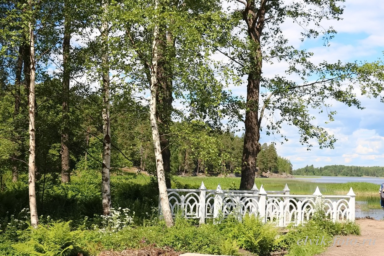 Парк Монрепо42