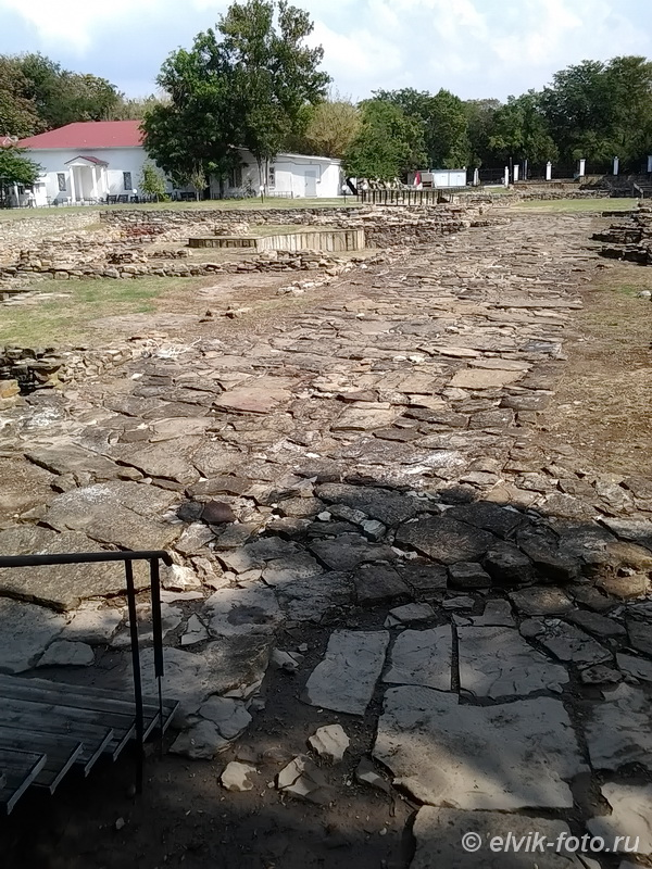 museumanapa48