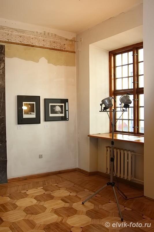 muzeja-vsture29