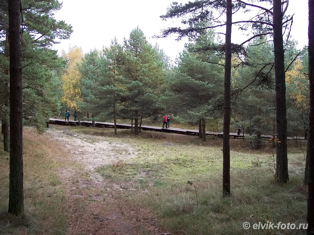 park-kosa54