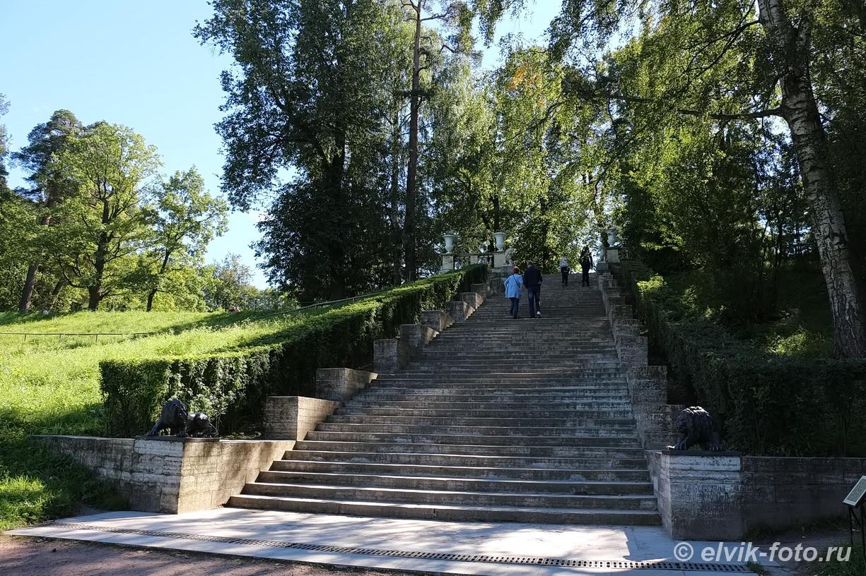 Павловск 14