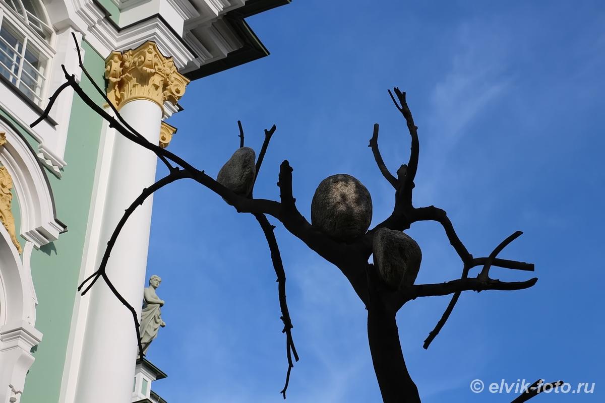 penone tree 15